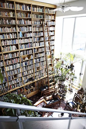 Bookshelves shira